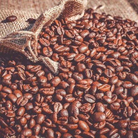 Koffie bonen extract
